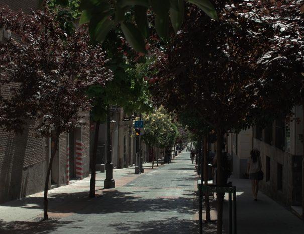 madrid-de-las-letras-gallery-3